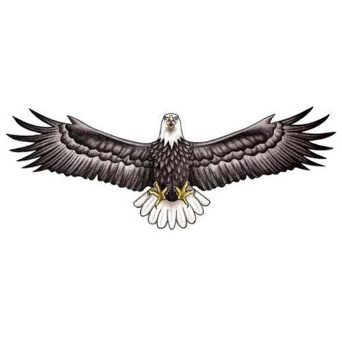 black eagle wingspan tattoo
